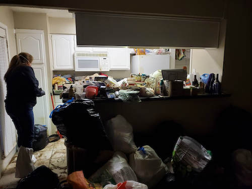 Professional Hoarder House Cleanup